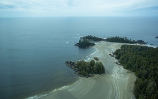 Aerial view of beach looking out to Pacific.