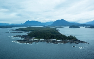 Vancouver Island from the air.